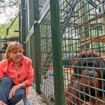Patti Ragan with Pongo, one of the resident orangutans at Center for Great Apes.