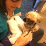 Bubbs, our Therapy Department dog was eager to meet our rabbit and they have become fast friends!